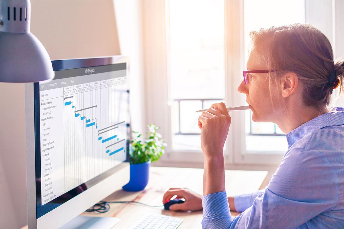 Manager Studying Gantt Chart